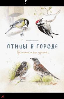 Анна Васильева - Птицы в городе. Где найти и как узнать