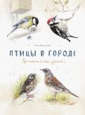 Анна Васильева - Птицы в городе. Где найти и как узнать обложка книги