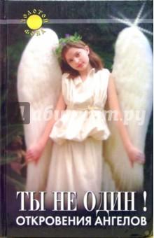 Ты не один! Откровения ангелов - Амбика Воутерс