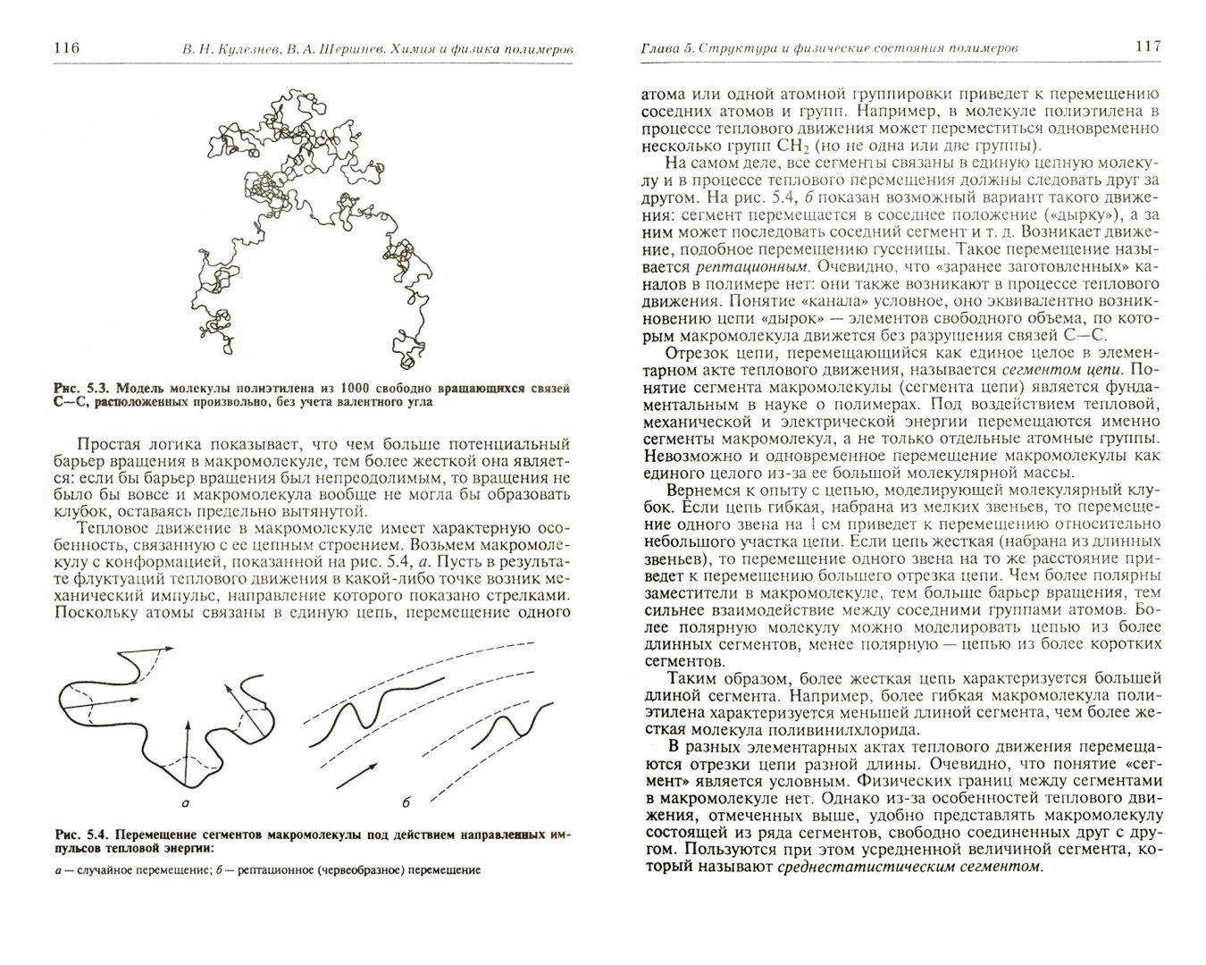Иллюстрация 1 из 7 для Химия и физика полимеров. Учебное пособие - Кулезнев, Шершнев | Лабиринт - книги. Источник: Лабиринт