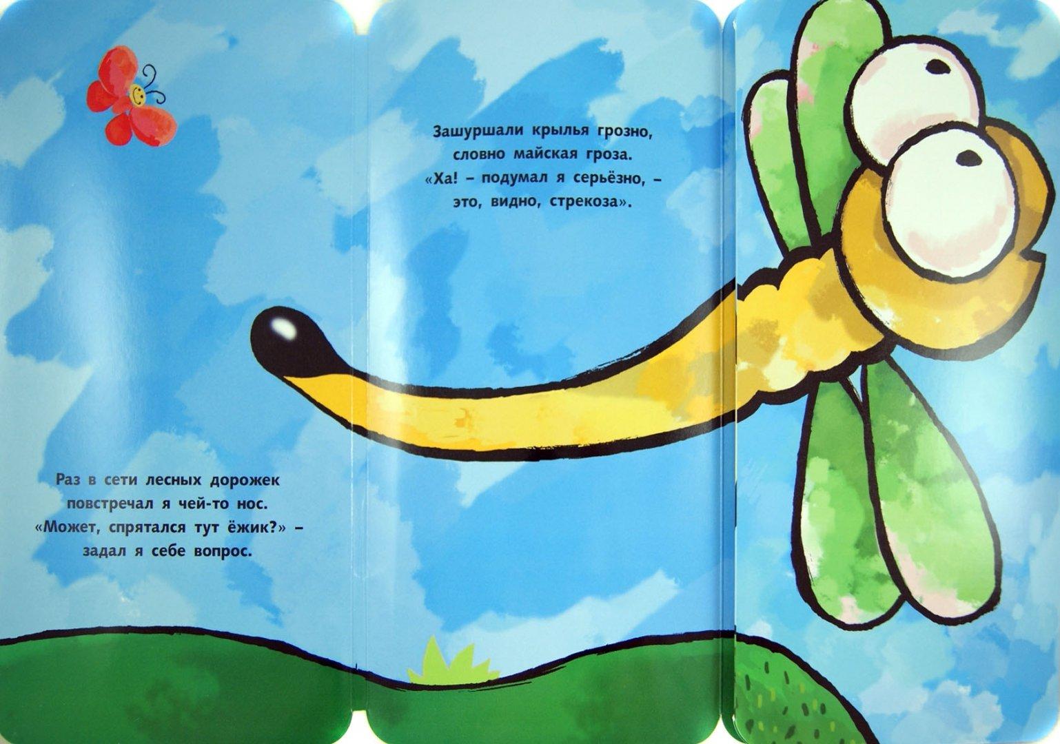 Иллюстрация 1 из 11 для Это ежик? - П. Волцит | Лабиринт - книги. Источник: Лабиринт