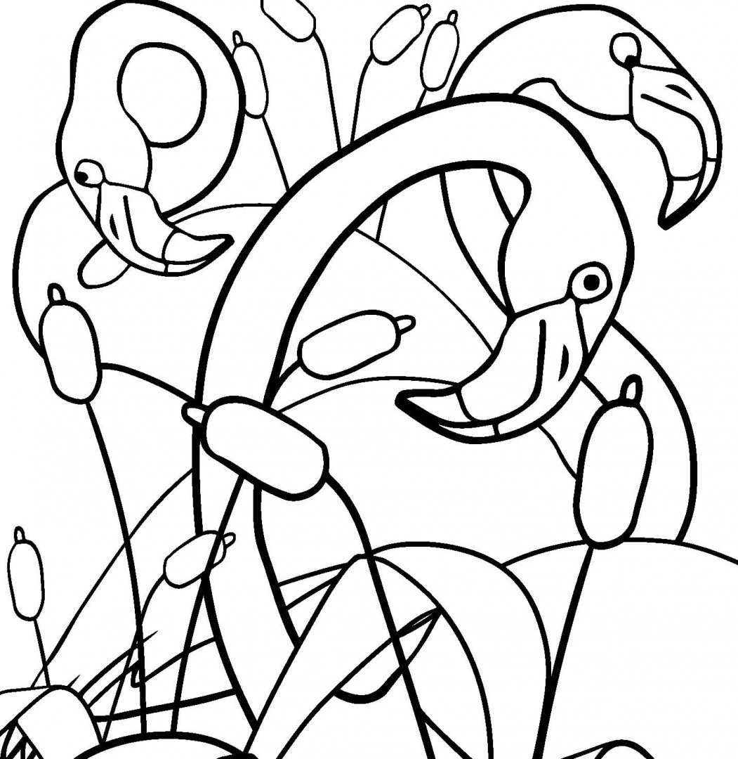 Иллюстрация 9 из 27 для Удивительные животные. Раскраска ...