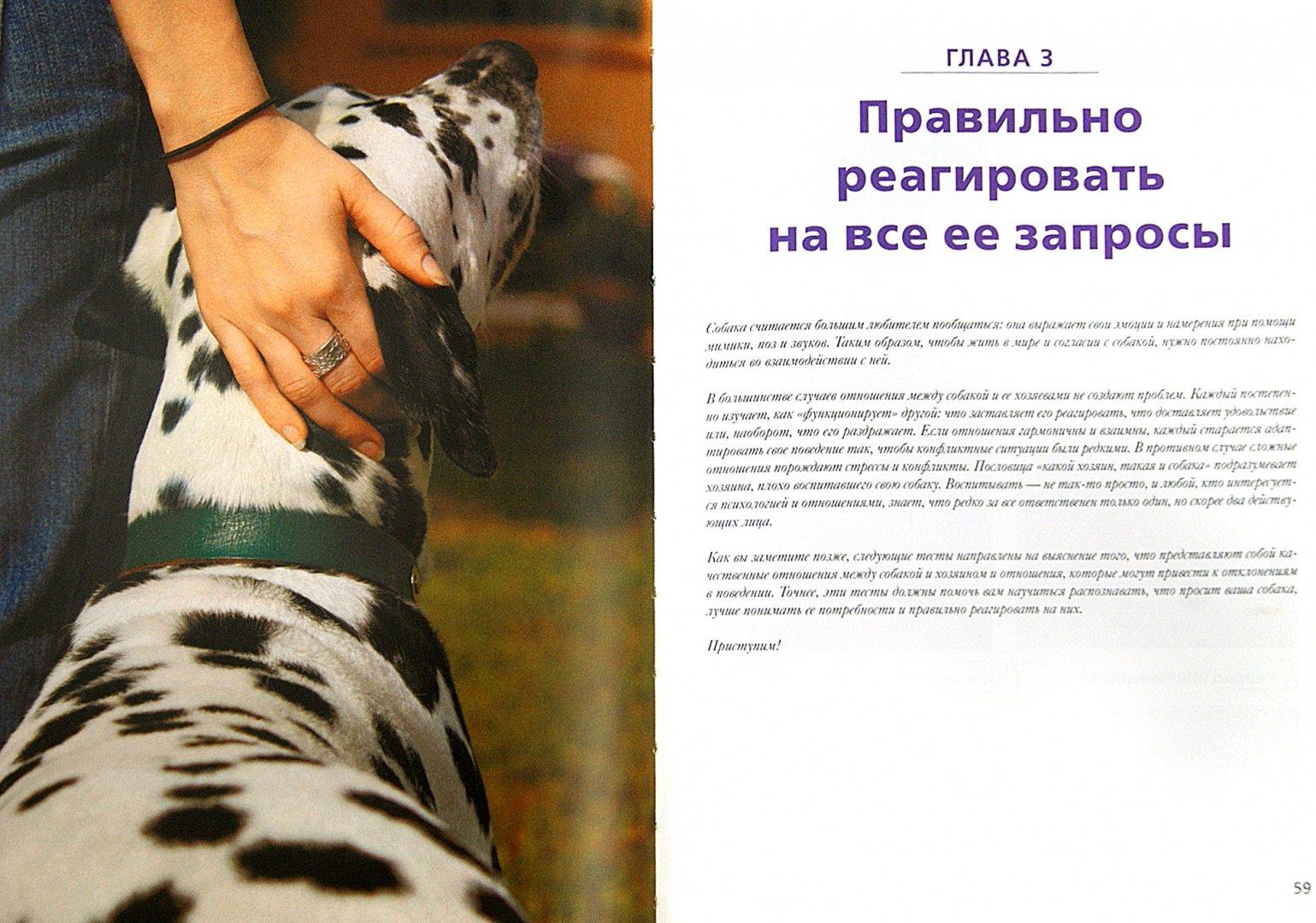 Иллюстрация 1 из 4 для Расшифруйте язык вашей собаки - Драмар, Барлерина | Лабиринт - книги. Источник: Лабиринт