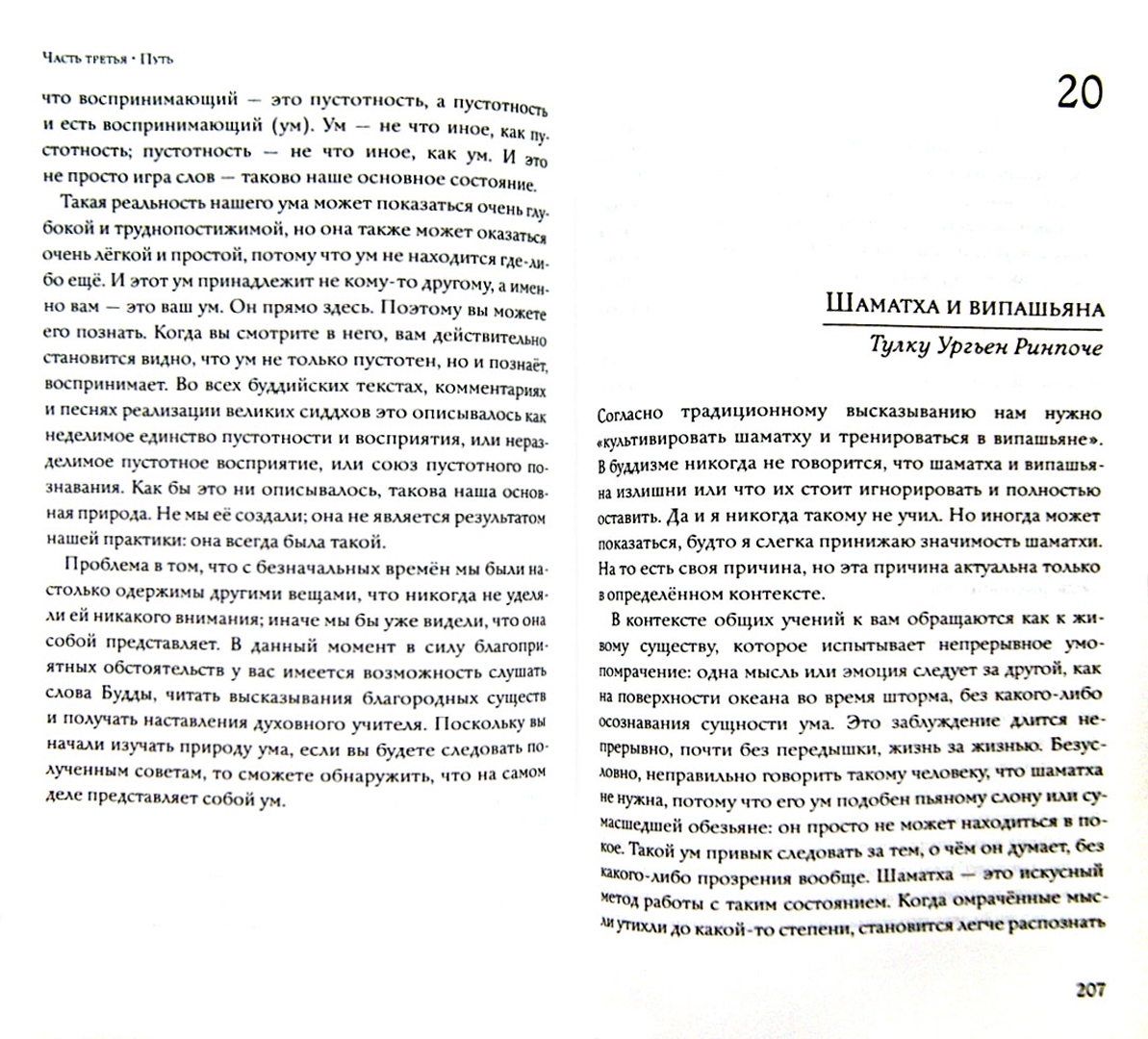 Иллюстрация 1 из 9 для Сущность Дзогчен. Как превратить заблуждение в мудрость - Ургьен Тулку   Лабиринт - книги. Источник: Лабиринт