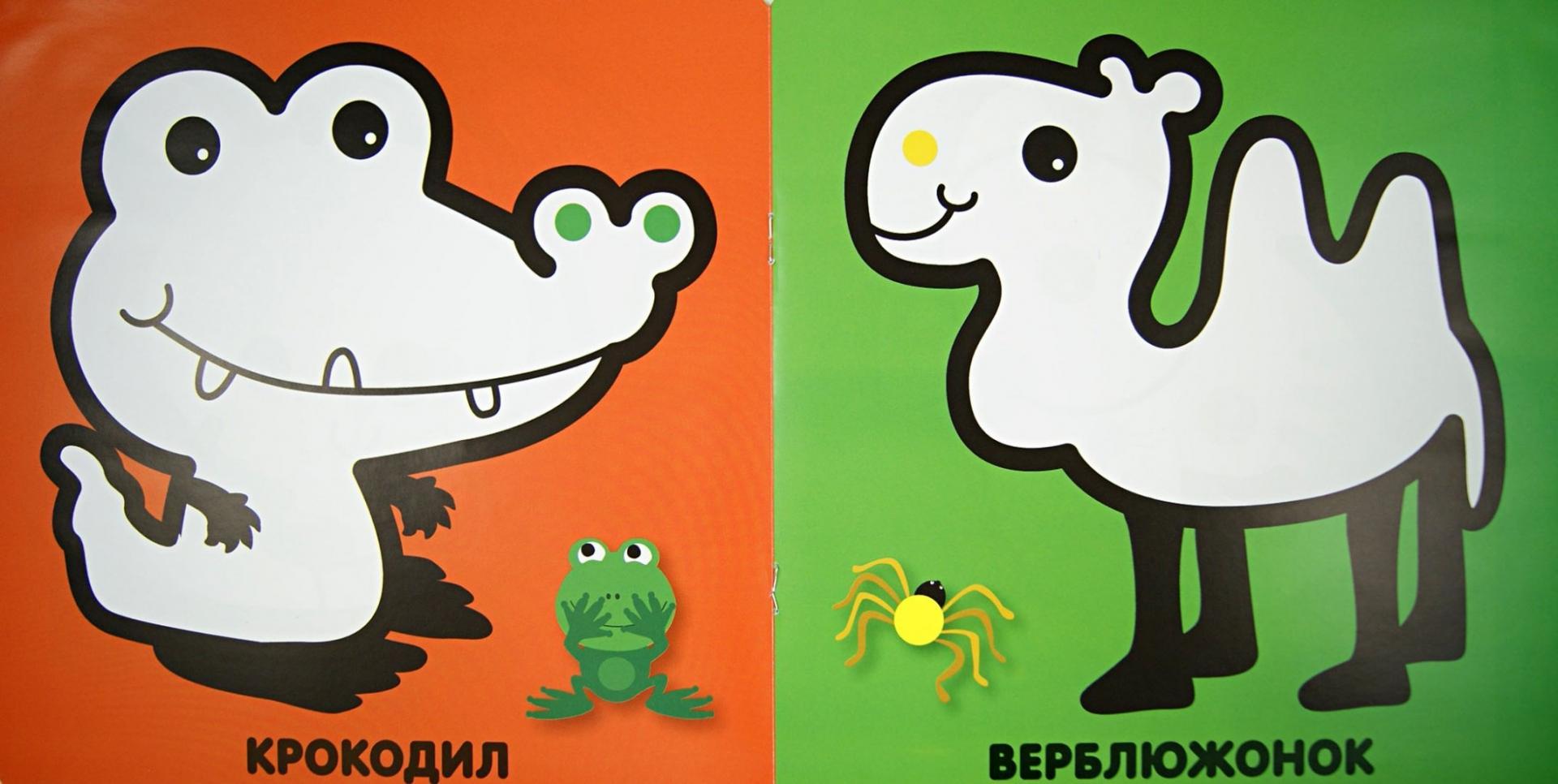 Иллюстрация 1 из 16 для Зоопарк | Лабиринт - книги. Источник: Лабиринт