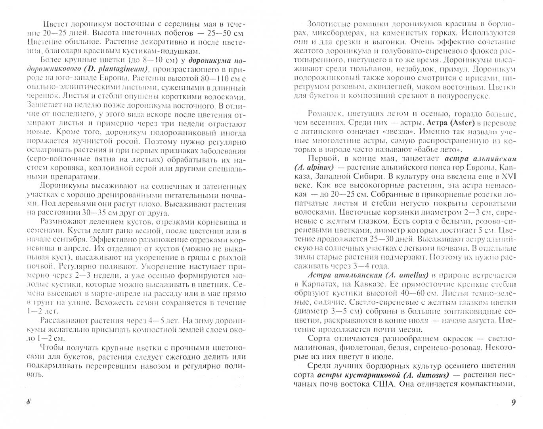 Иллюстрация 1 из 6 для Разноцветные ромашки - Наталья Лунина | Лабиринт - книги. Источник: Лабиринт