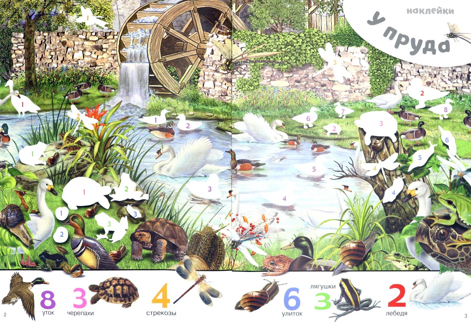 Иллюстрация 1 из 25 для 1000 животных с наклейками   Лабиринт - книги. Источник: Лабиринт