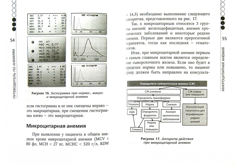 Иллюстрация 1 из 24 для Анемия. Руководство для практических врачей - Верткин, Ховасова, Ларюшкина   Лабиринт - книги. Источник: Лабиринт
