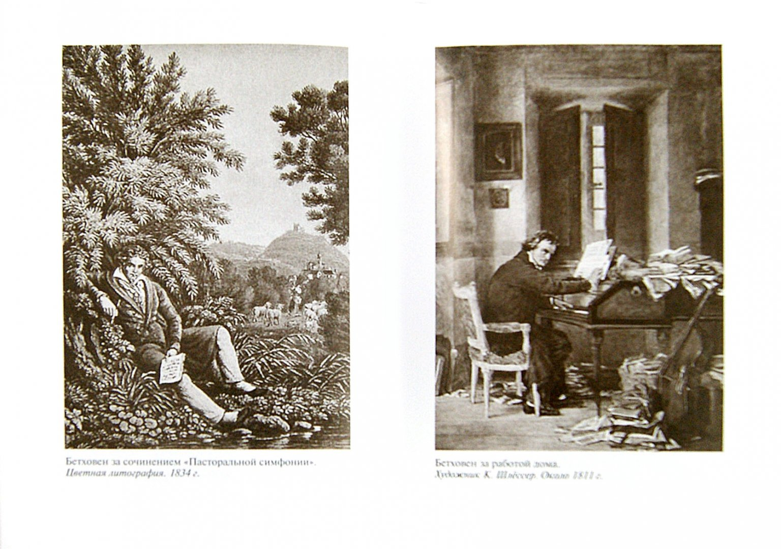 Иллюстрация 1 из 16 для Бетховен - Бернар Фоконье | Лабиринт - книги. Источник: Лабиринт