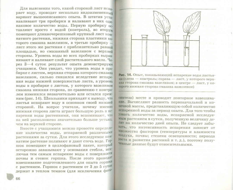 Иллюстрация 1 из 8 для Комнатные растения в школе: наблюдения и эксперименты - Алексей Анциферов   Лабиринт - книги. Источник: Лабиринт