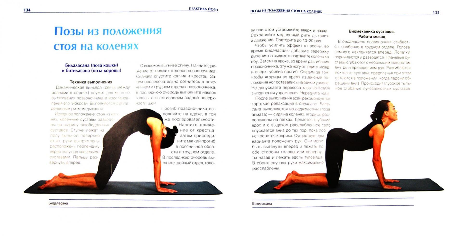 филе йога позы картинки с названиями для начинающих серёг фианитом будет