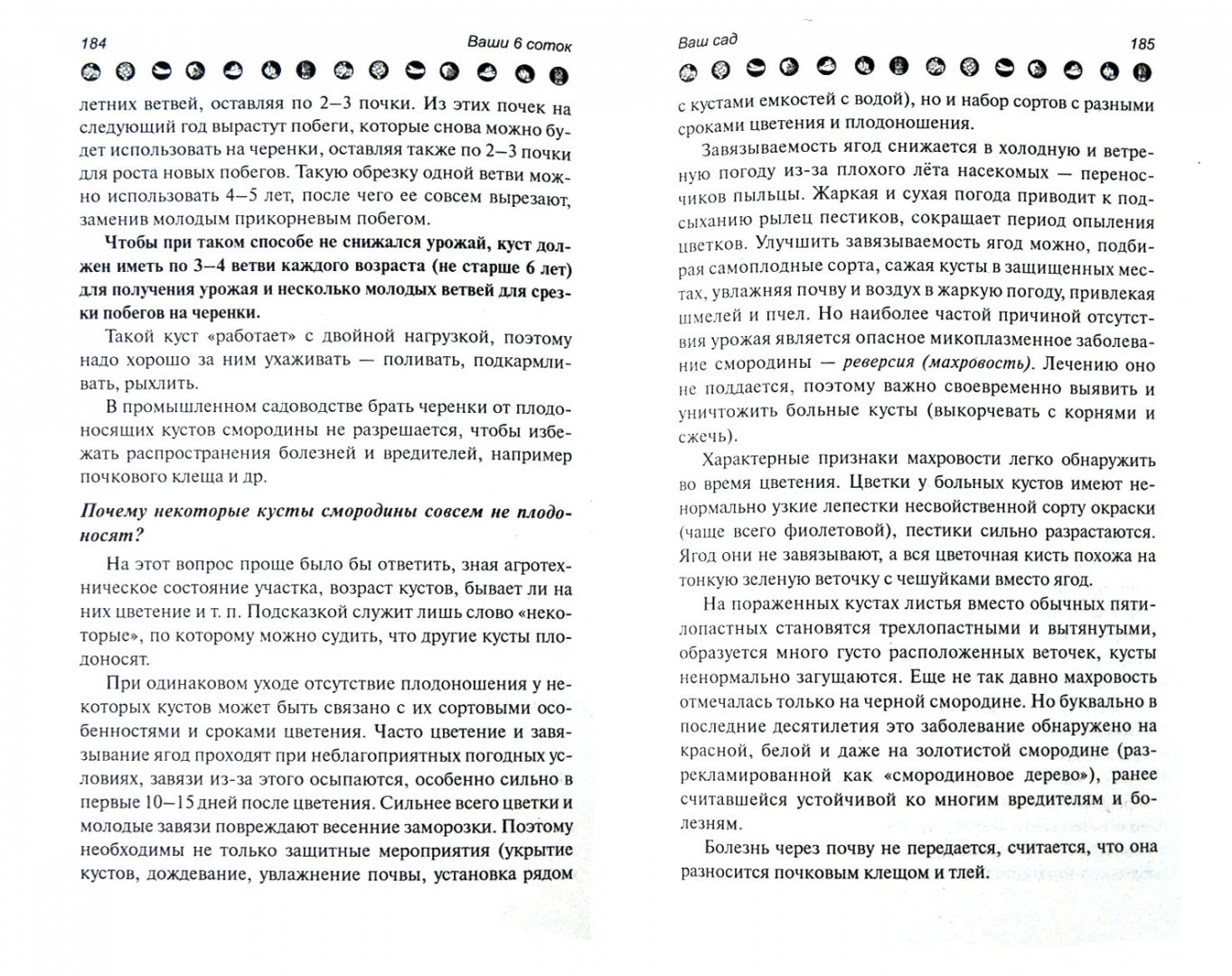 Иллюстрация 1 из 7 для Ваши 6 соток. Хитрости и советы - Андрей Туманов | Лабиринт - книги. Источник: Лабиринт