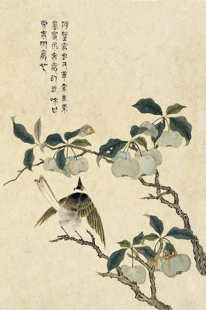 Для, набор открыток цветы и птицы