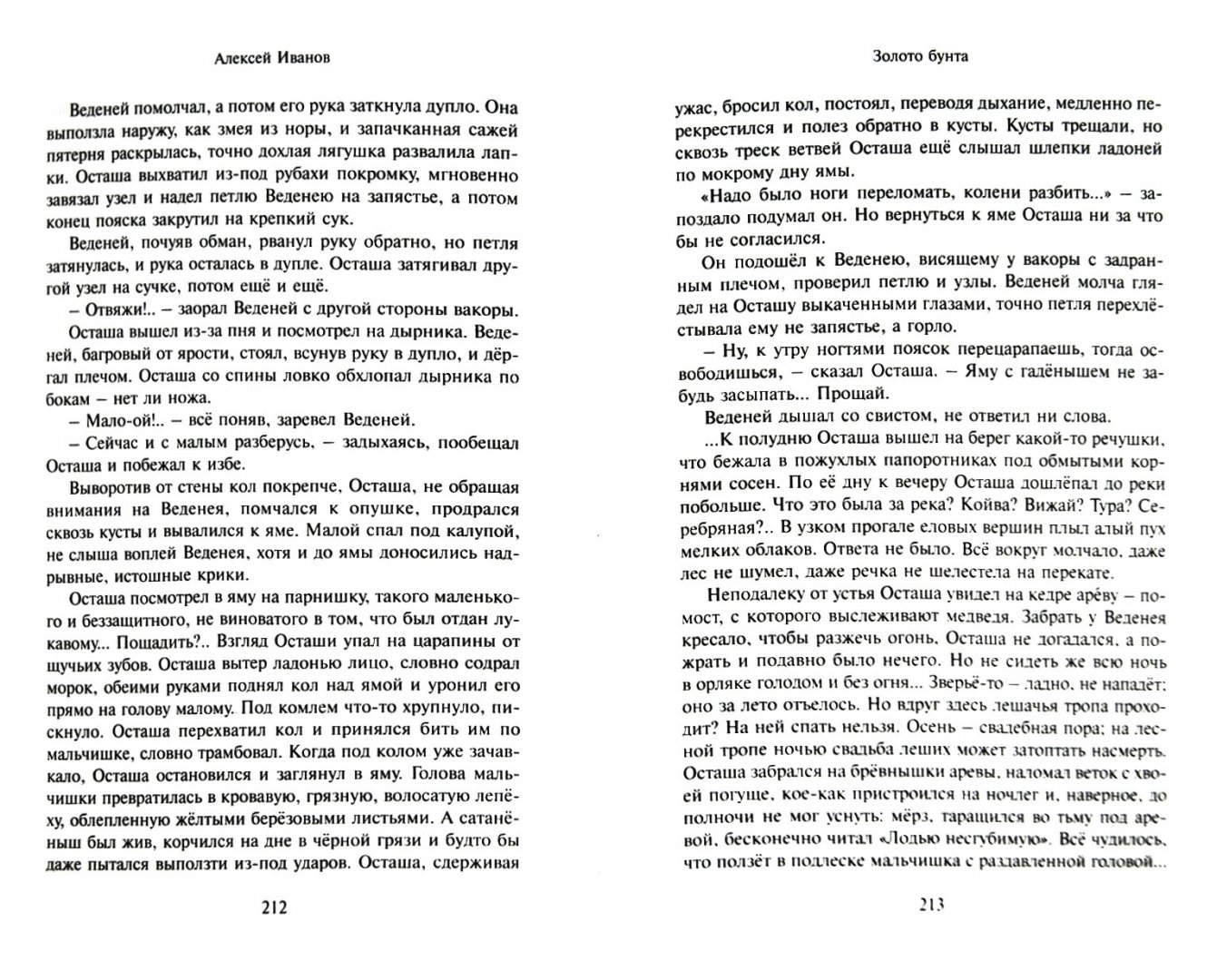 Иллюстрация 1 из 13 для Золото бунта - Алексей Иванов | Лабиринт - книги. Источник: Лабиринт