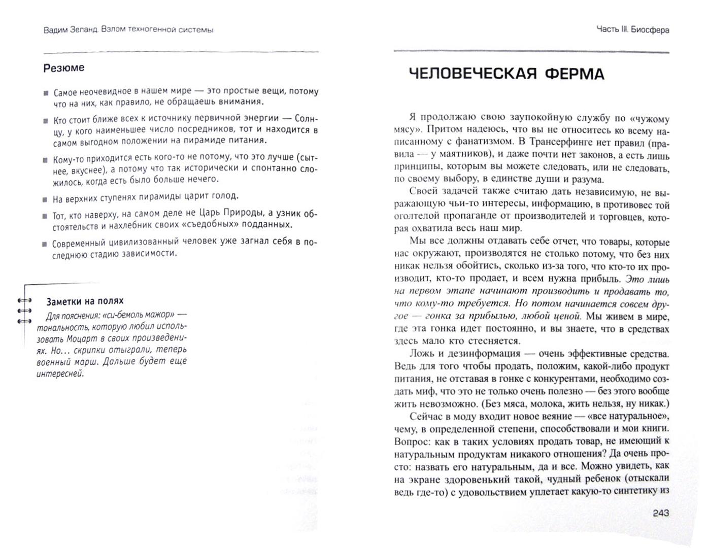 Иллюстрация 1 из 30 для Взлом техногенной системы - Вадим Зеланд | Лабиринт - книги. Источник: Лабиринт