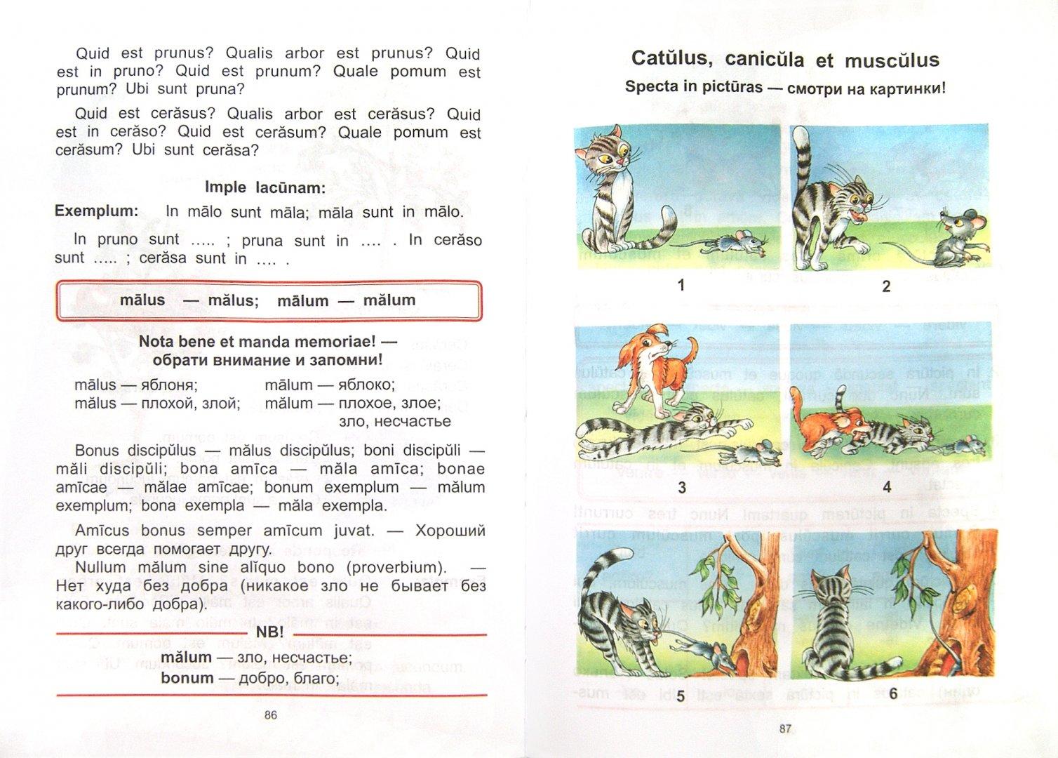 Иллюстрация 1 из 21 для Моя первая латинская книжка. 3-6 классы. Учебник - Нина Кацман   Лабиринт - книги. Источник: Лабиринт