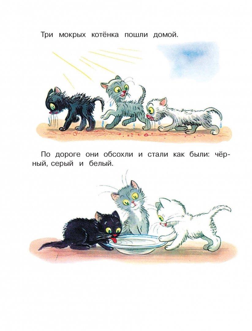 картинки к сказке три котенка сутеев распечатать тренды
