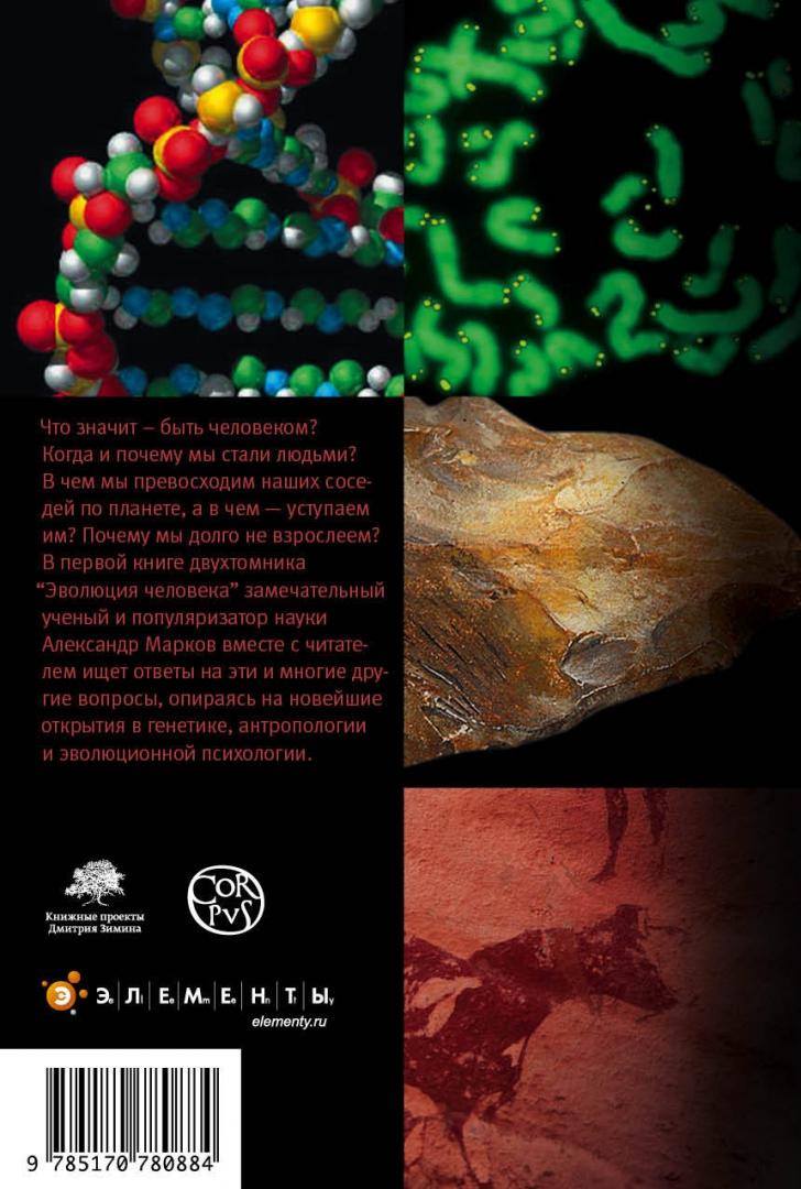Иллюстрация 1 из 20 для Эволюция человека. Книга 1. Обезьяны, кости и гены - Александр Марков | Лабиринт - книги. Источник: Лабиринт