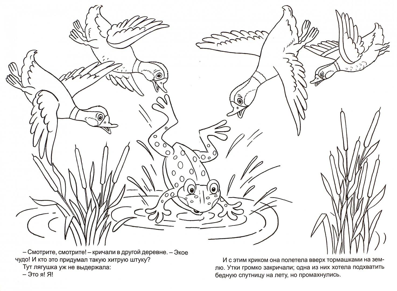 Рисунки к сказке лягушка путешественница карандашом