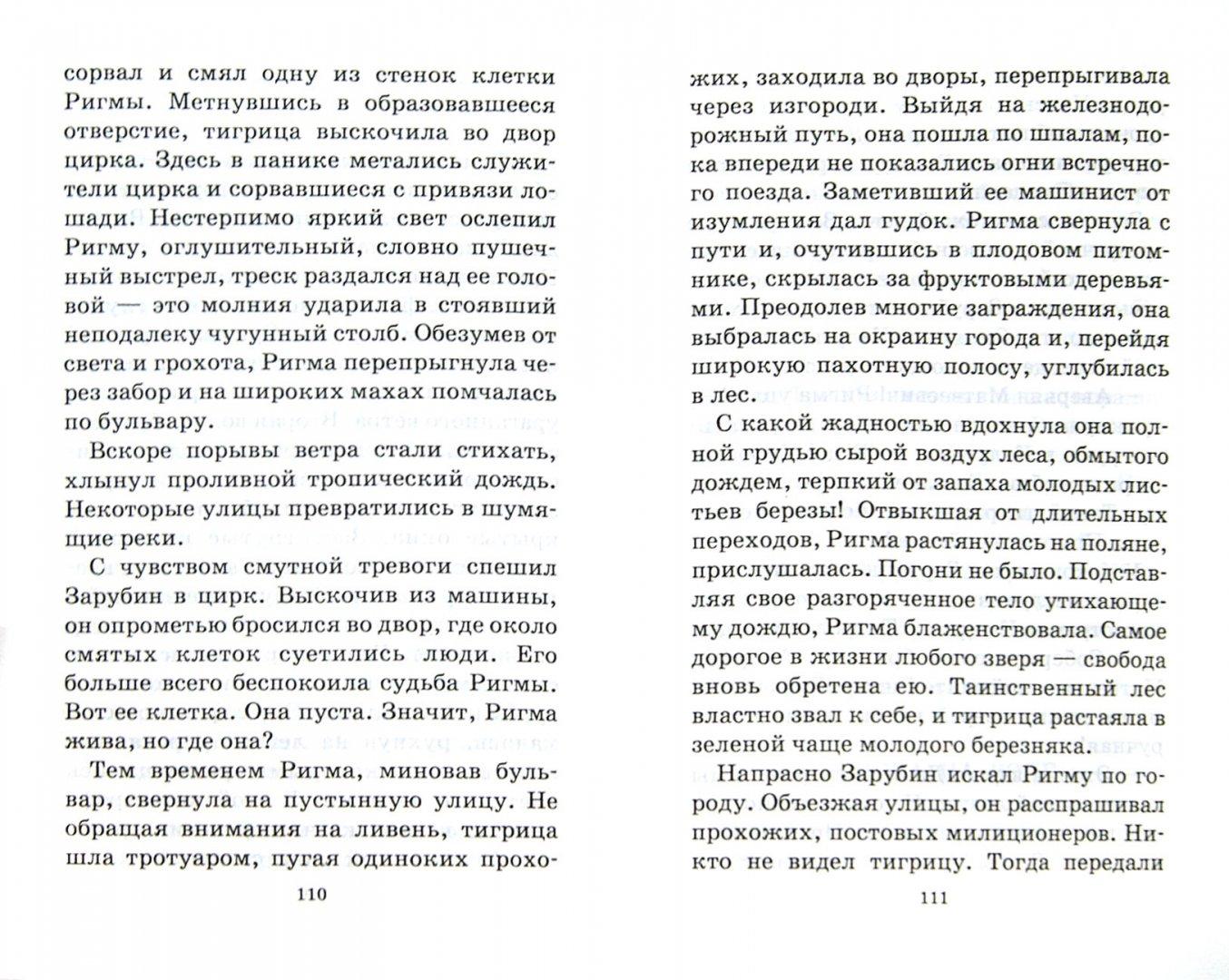Иллюстрация 1 из 31 для Последний барс - Всеволод Сысоев | Лабиринт - книги. Источник: Лабиринт