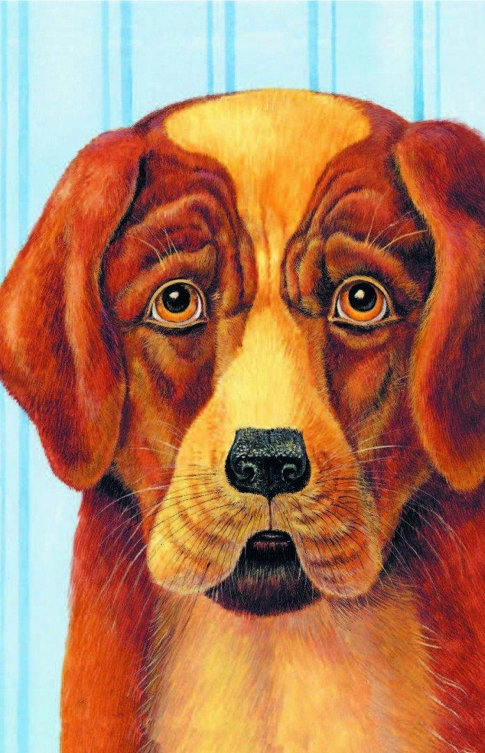 философские рассказы картинки к ним про собаку нету кто