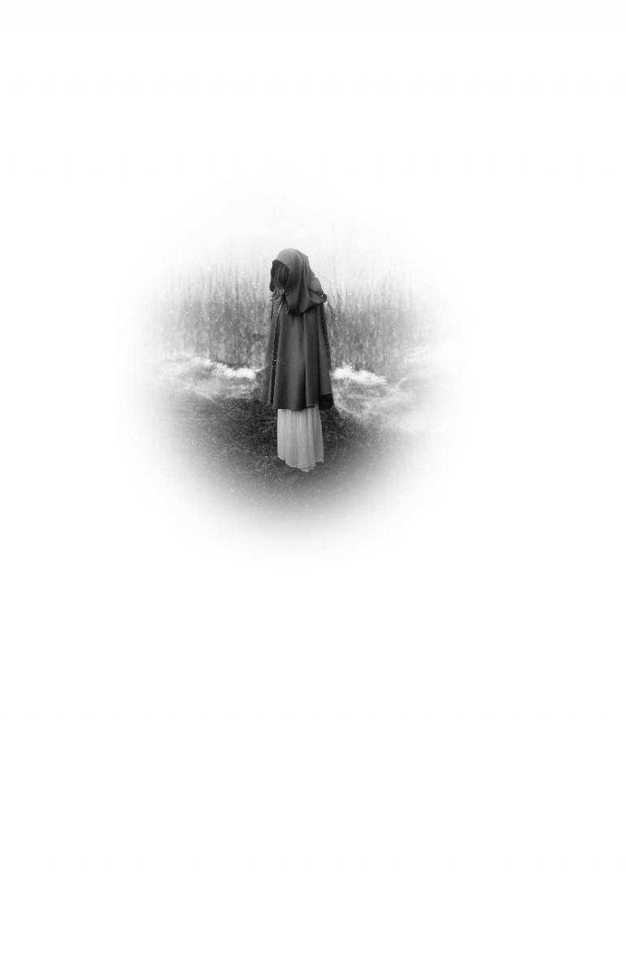 Иллюстрация 1 из 27 для Люди зимы - Дженнифер Макмахон | Лабиринт - книги. Источник: Лабиринт