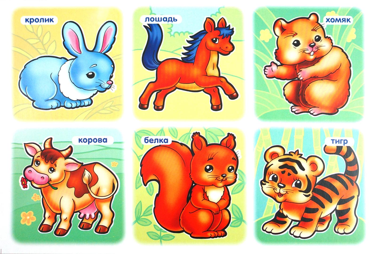 учить животных малышам картинки именитого