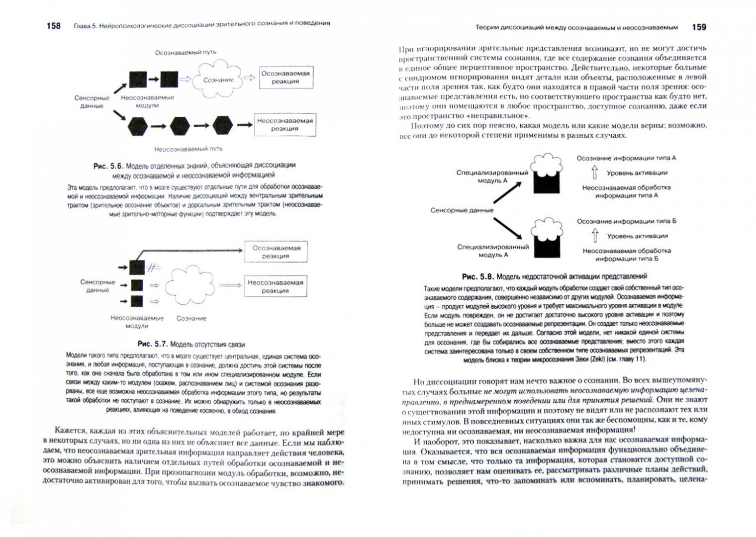 Иллюстрация 1 из 18 для Психология сознания - Антти Ревонсуо | Лабиринт - книги. Источник: Лабиринт