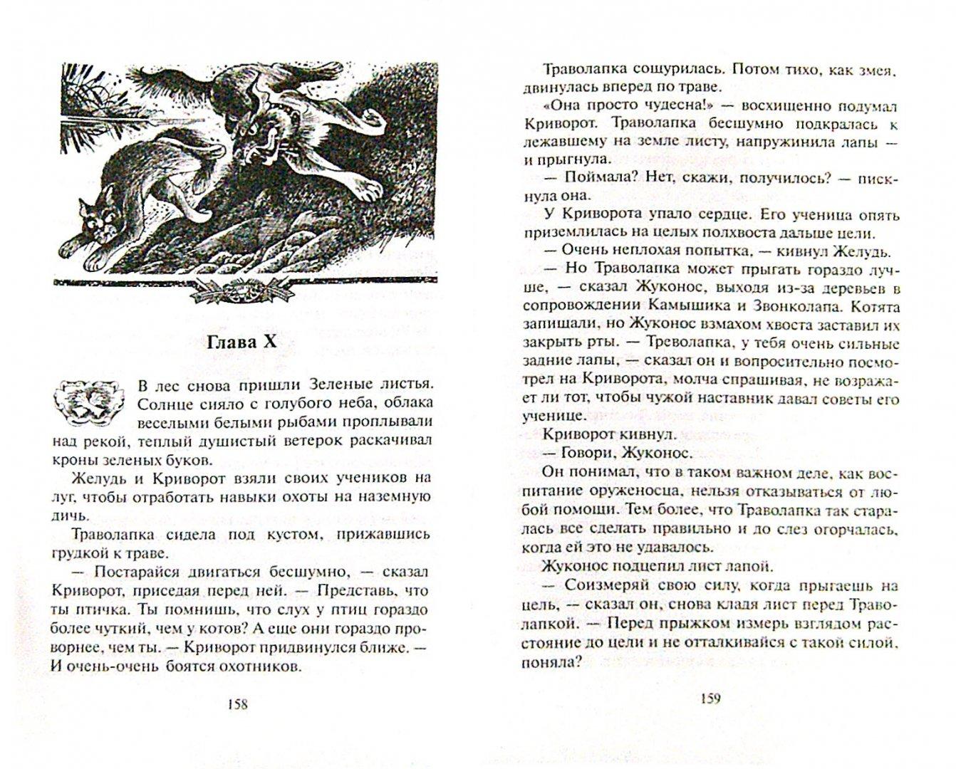 Иллюстрация 1 из 53 для Обещание Метеора. Прозрение - Эрин Хантер   Лабиринт - книги. Источник: Лабиринт
