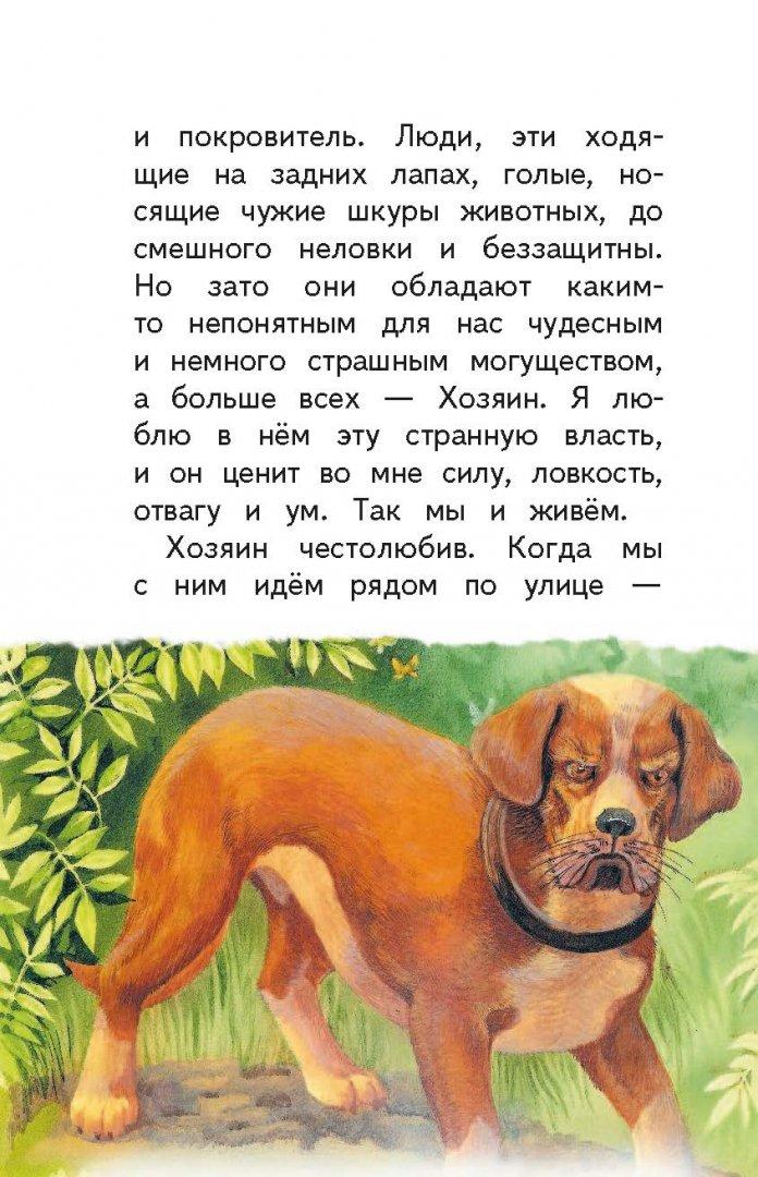 Рассказы с картинками про собак