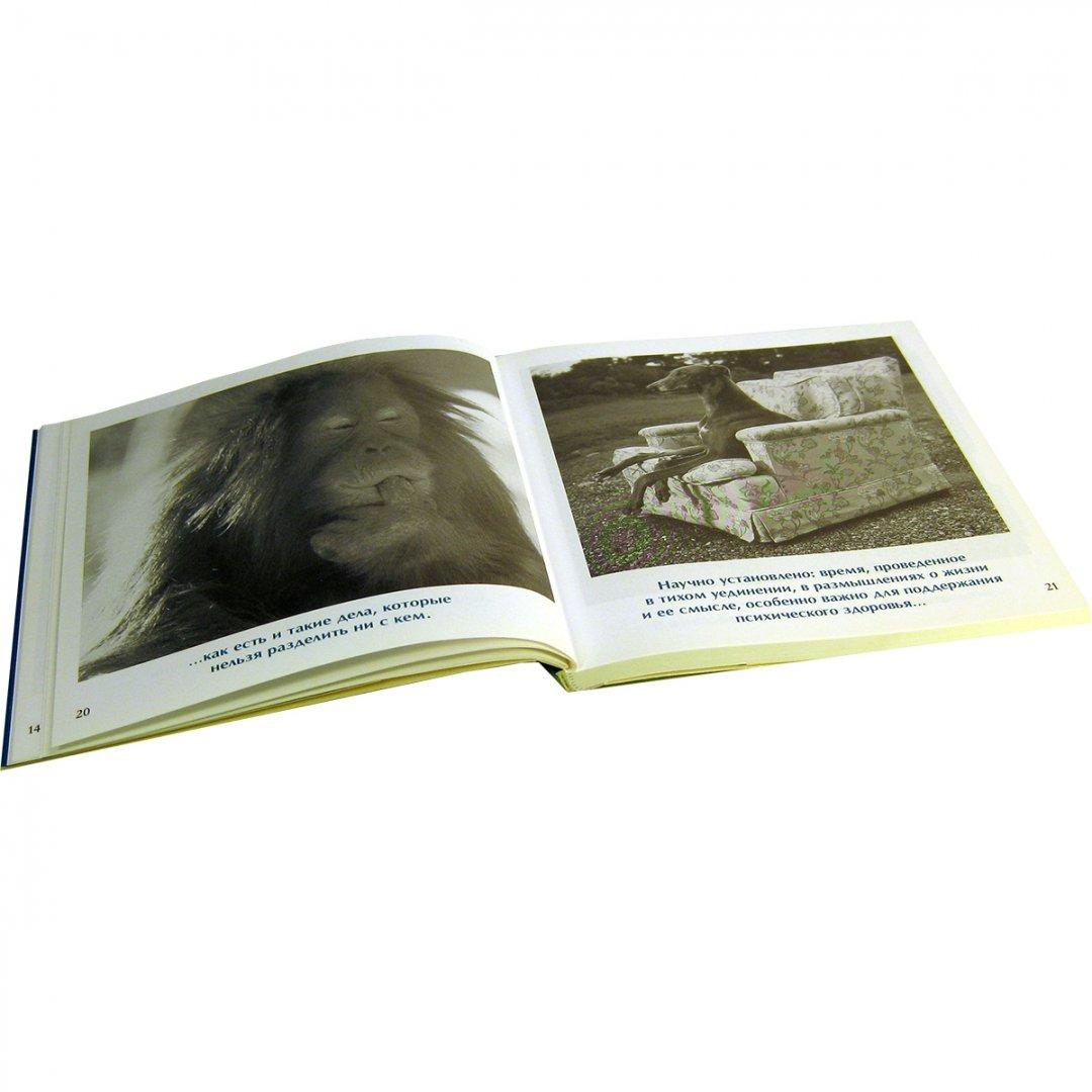 Иллюстрация 9 из 14 для Друзья навеки - Бредли Грив | Лабиринт - книги. Источник: Лабиринт