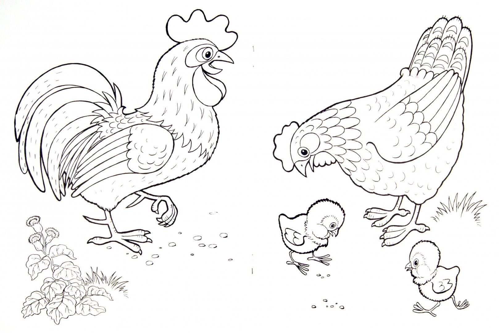 Иллюстрация 1 из 5 для Домашние любимцы. Раскраска - Т. Коваль | Лабиринт - книги. Источник: Лабиринт