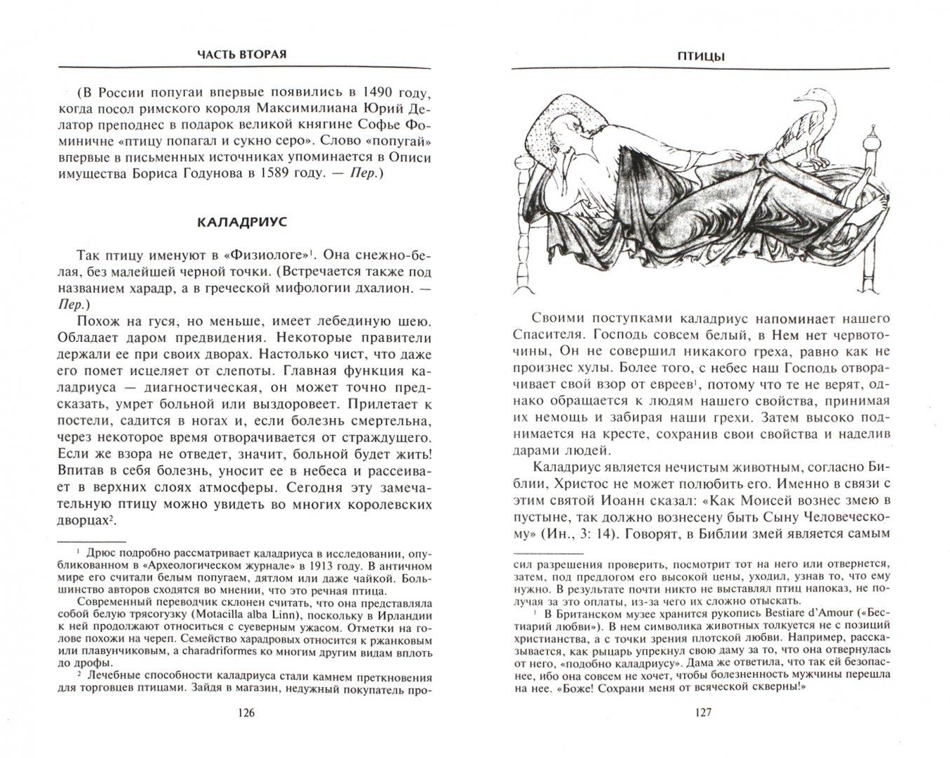 Иллюстрация 1 из 22 для Средневековый бестиарий. Что думали наши предки об окружающем их мире - Теренс Уайт | Лабиринт - книги. Источник: Лабиринт