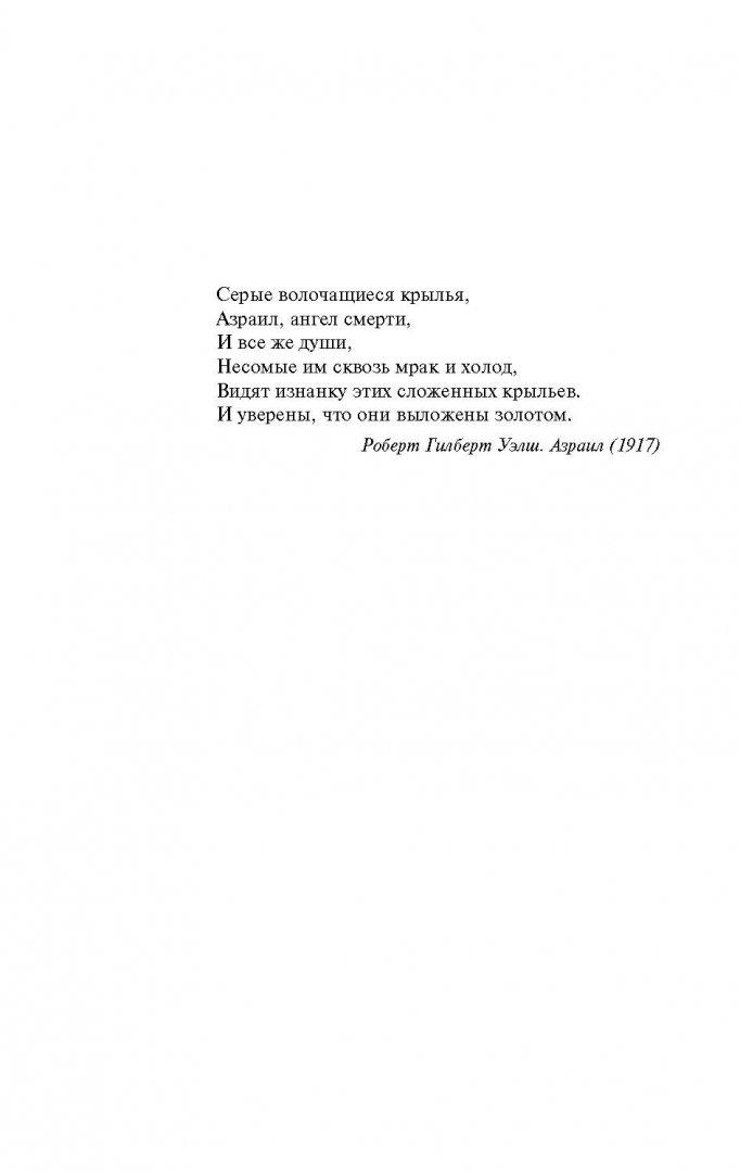 Иллюстрация 4 из 37 для Сидни Шелдон. Ангел тьмы - Тилли Бэгшоу | Лабиринт - книги. Источник: Лабиринт