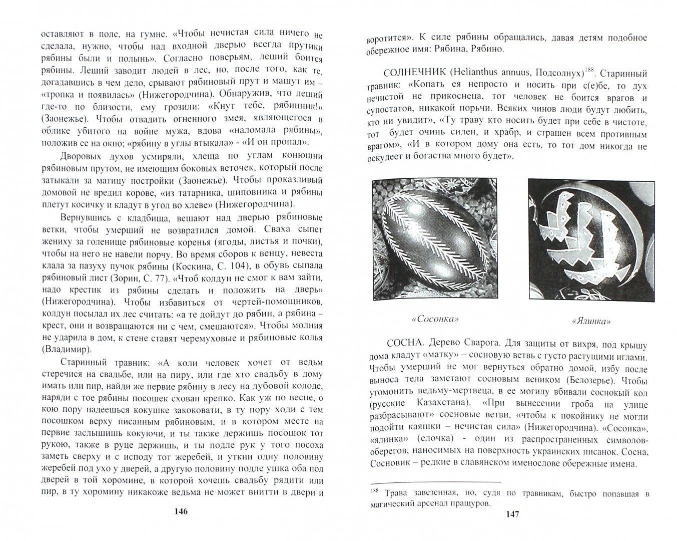 Иллюстрация 1 из 16 для Книга оберегов - Волхв Богумил   Лабиринт - книги. Источник: Лабиринт