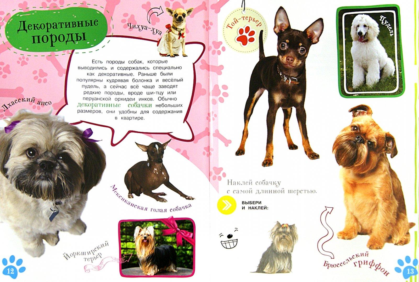 Иллюстрация 1 из 20 для Как воспитать щенка   Лабиринт - книги. Источник: Лабиринт