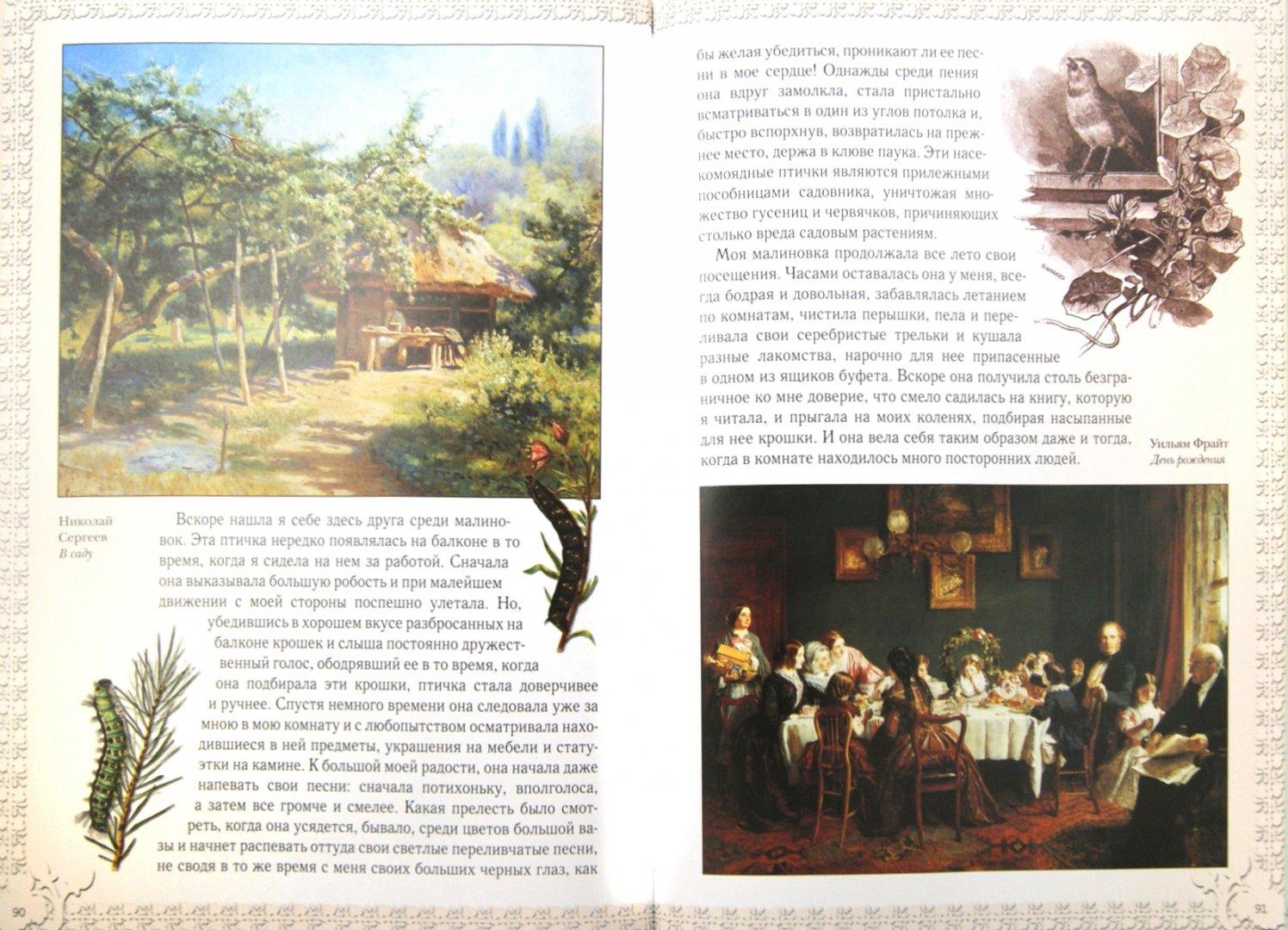 Иллюстрация 1 из 3 для Дружба с природой - Дмитрий Кайгородов   Лабиринт - книги. Источник: Лабиринт