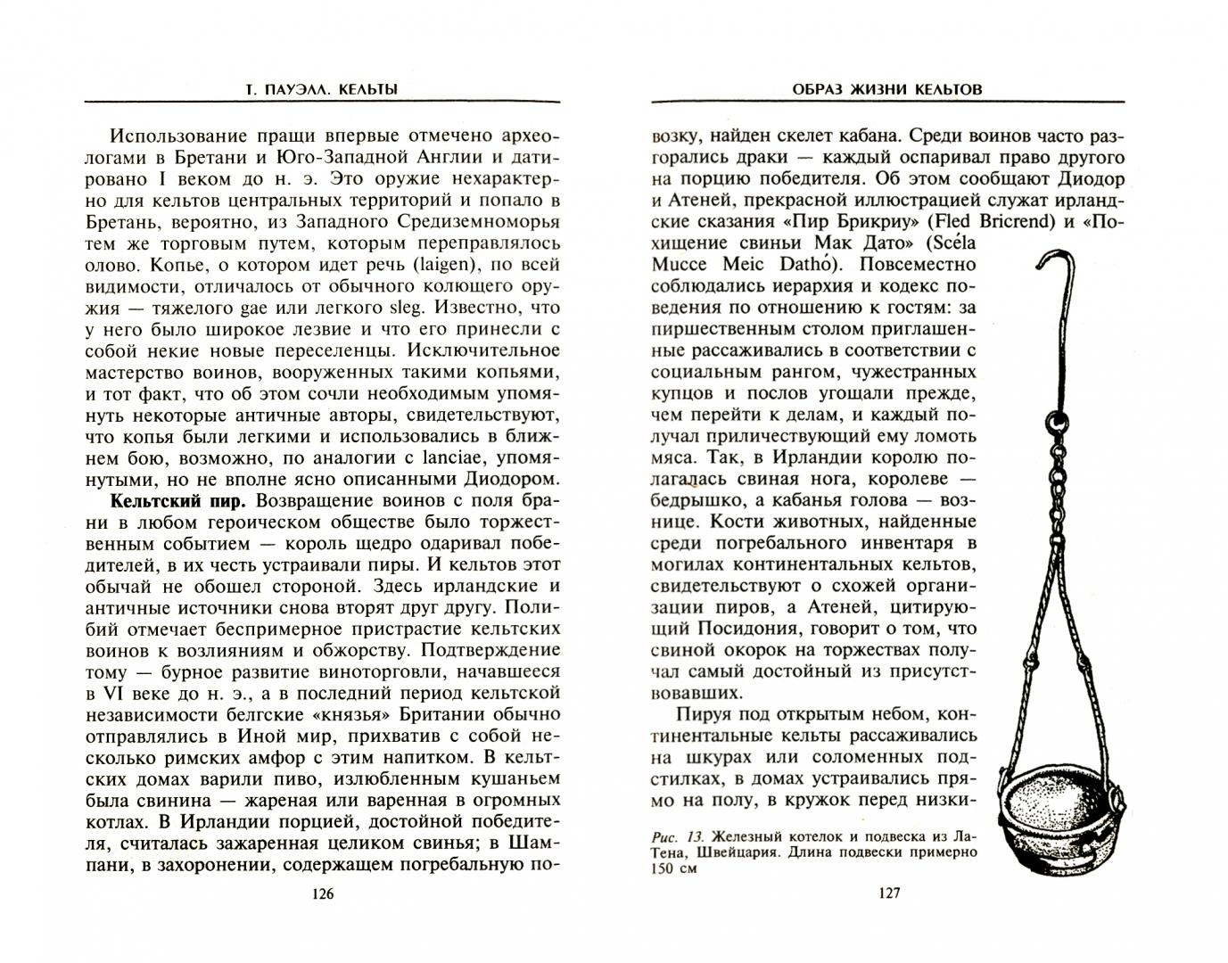 Иллюстрация 1 из 17 для Кельты. Воины и маги - Теренс Пауэлл | Лабиринт - книги. Источник: Лабиринт