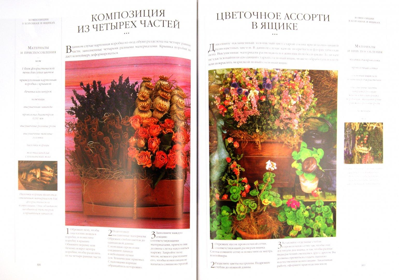 Иллюстрация 1 из 16 для Композиции из цветов и листьев - Теренс Мур | Лабиринт - книги. Источник: Лабиринт