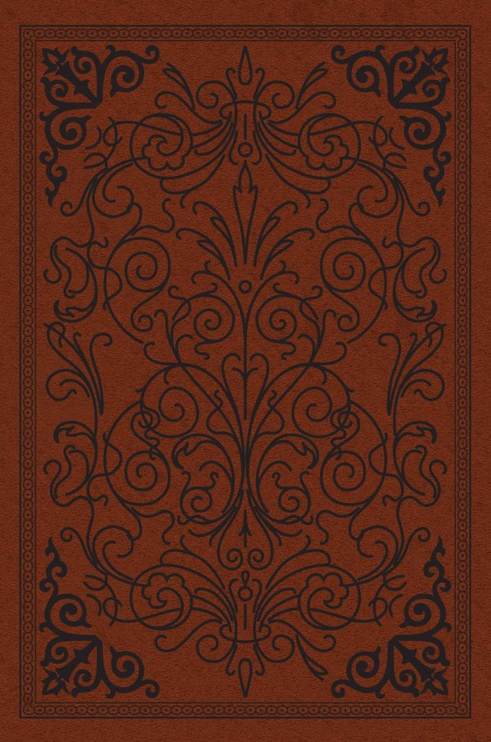 Иллюстрация 1 из 33 для Святое Евангелие | Лабиринт - книги. Источник: Лабиринт