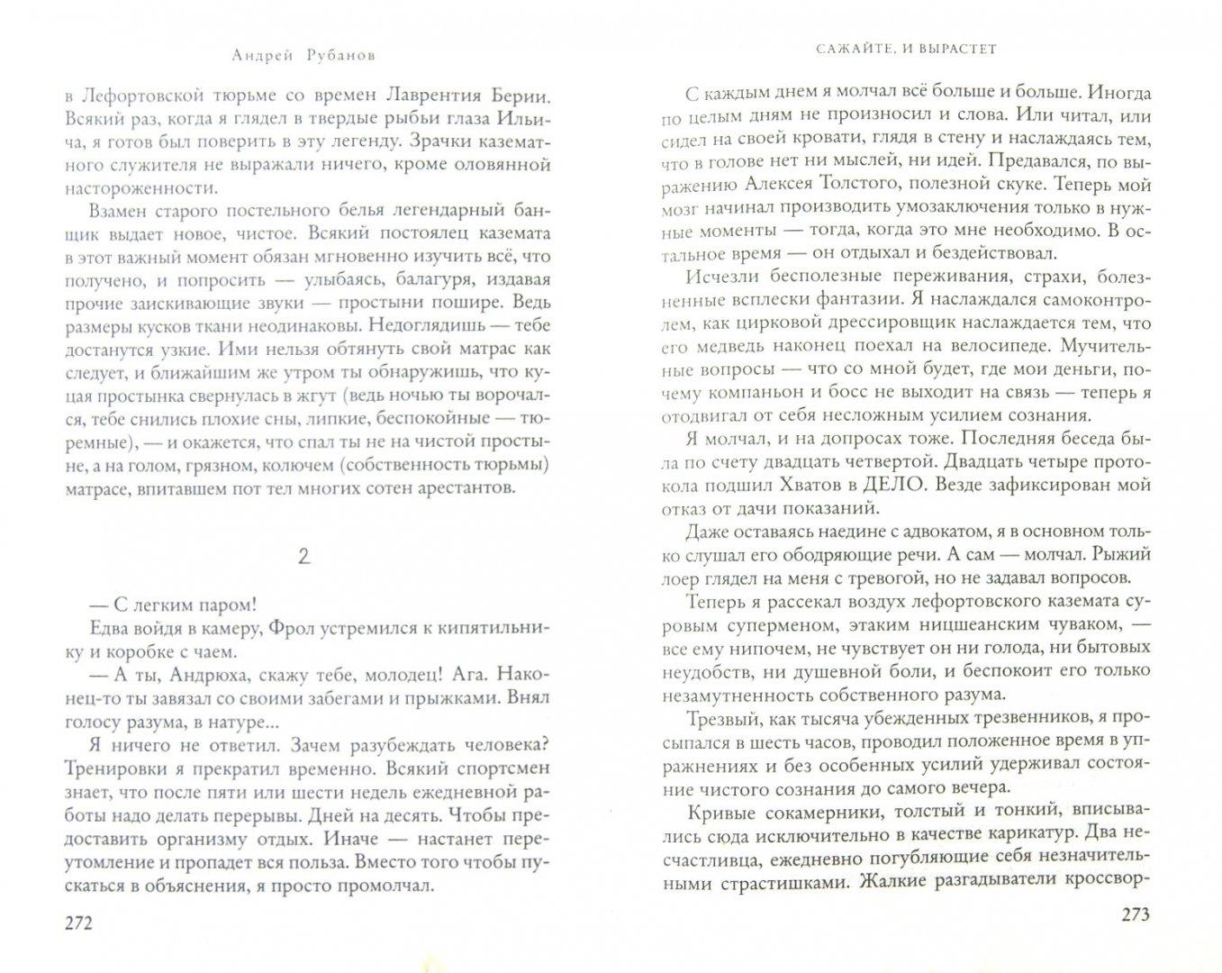 Иллюстрация 1 из 7 для Сажайте, и вырастет - Андрей Рубанов | Лабиринт - книги. Источник: Лабиринт