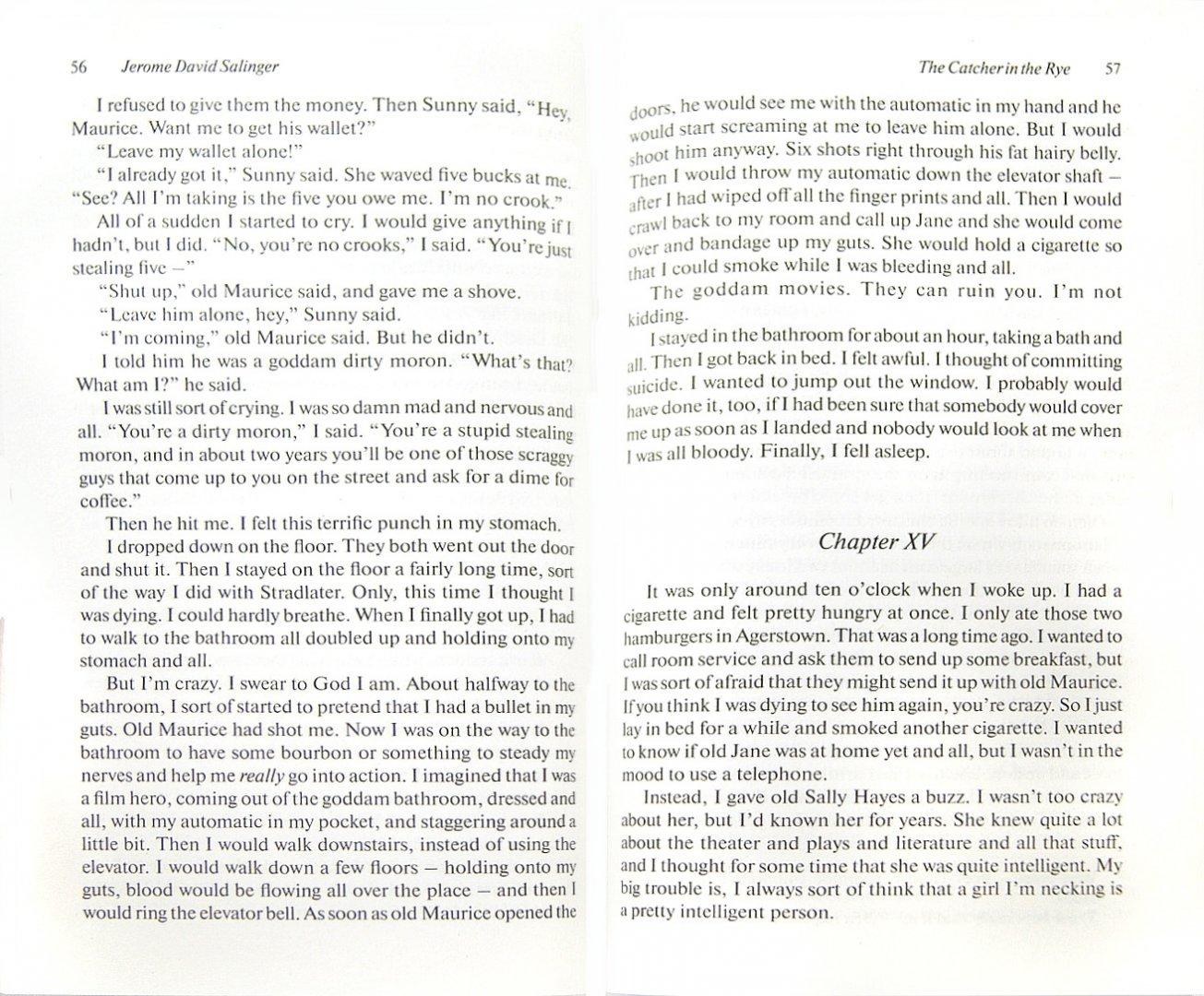 Иллюстрация 1 из 31 для The Catсher in the Rye - Jerome Salinger | Лабиринт - книги. Источник: Лабиринт