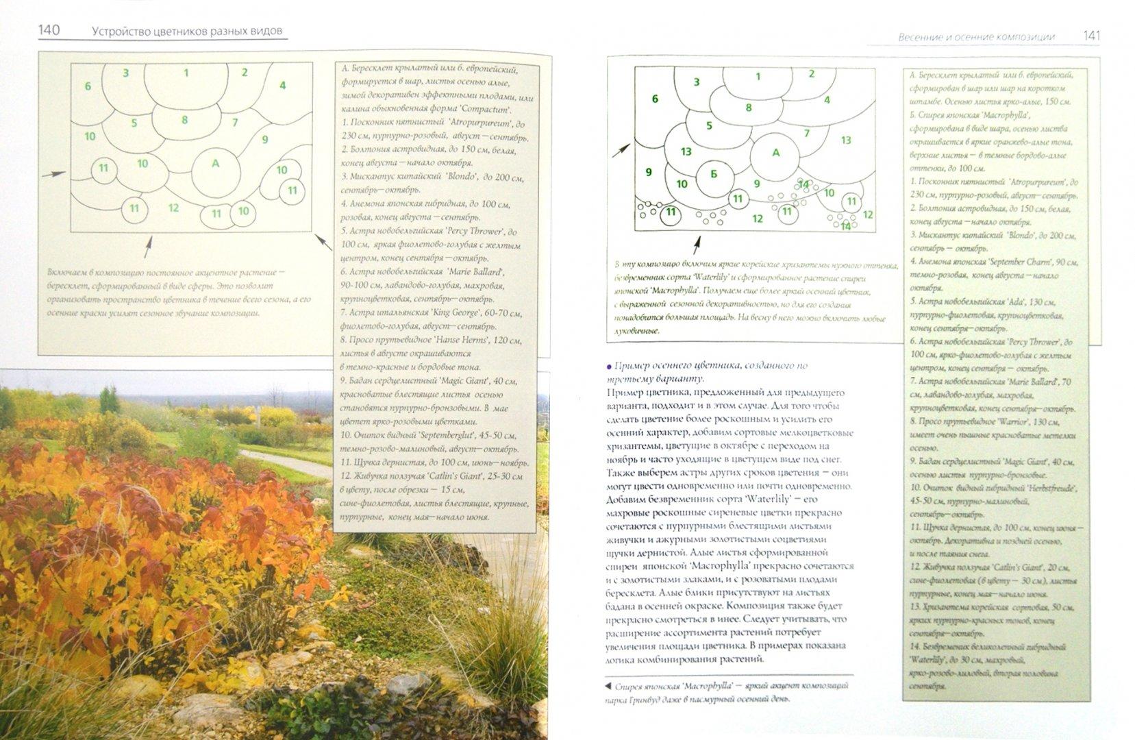 Иллюстрация 1 из 11 для Практика создания цветников: Проектирование и авторский дизайн - Елена Константинова | Лабиринт - книги. Источник: Лабиринт