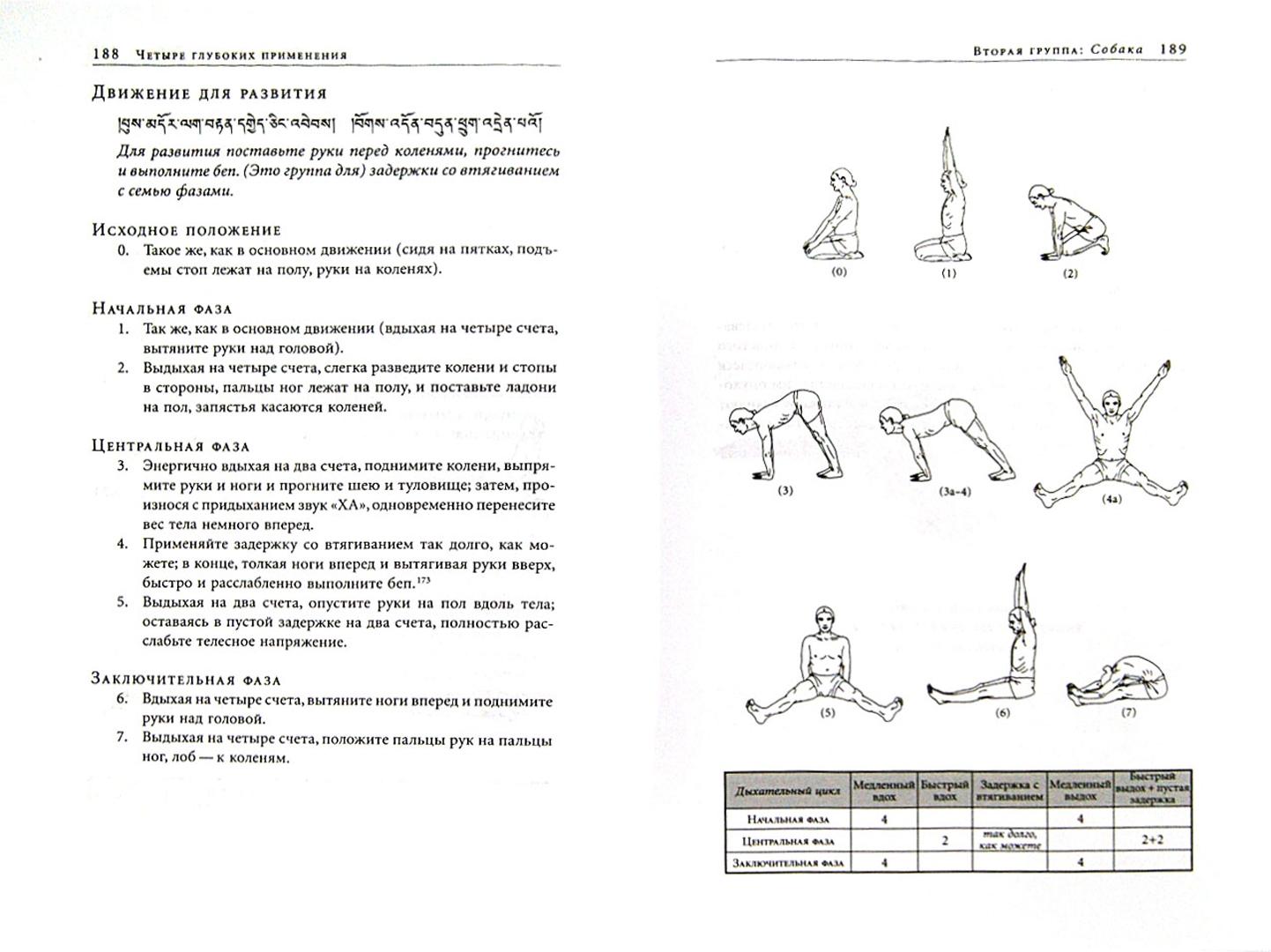 Иллюстрация 1 из 8 для Янтра-йога. Тибетская йога движения - Намкай Чогьял   Лабиринт - книги. Источник: Лабиринт