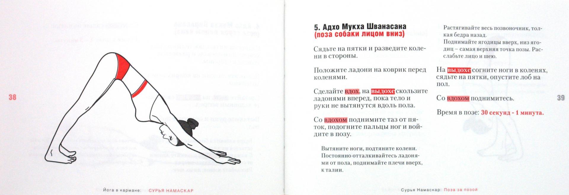 Иллюстрация 1 из 21 для Йога в кармане: Сурья Намаскар. Приветствие Солнца - Виталий Литвинов   Лабиринт - книги. Источник: Лабиринт