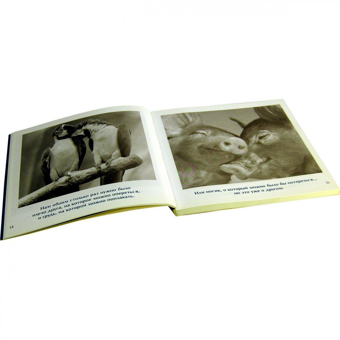 Иллюстрация 1 из 14 для Друзья навеки - Бредли Грив | Лабиринт - книги. Источник: Лабиринт
