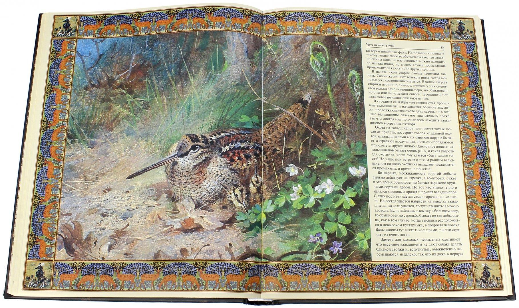 Иллюстрация 1 из 21 для Русская охота | Лабиринт - книги. Источник: Лабиринт