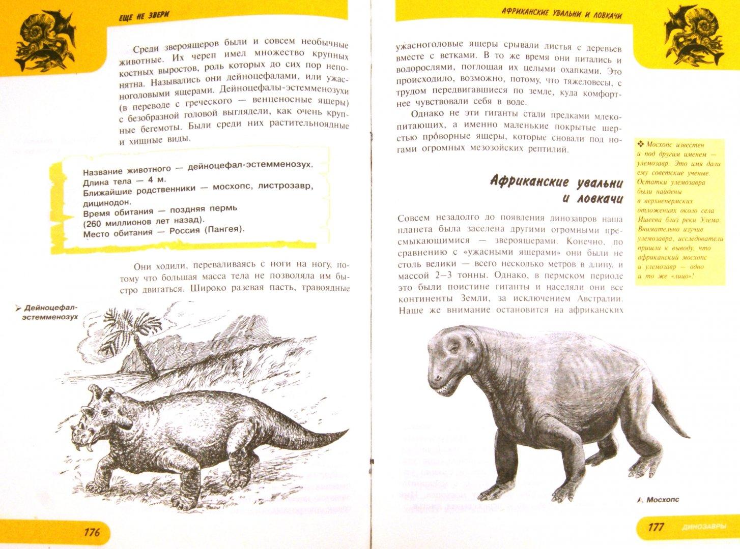 Иллюстрация 1 из 22 для Жизнь замечательных динозавров - Пахневич, Чегодаев | Лабиринт - книги. Источник: Лабиринт
