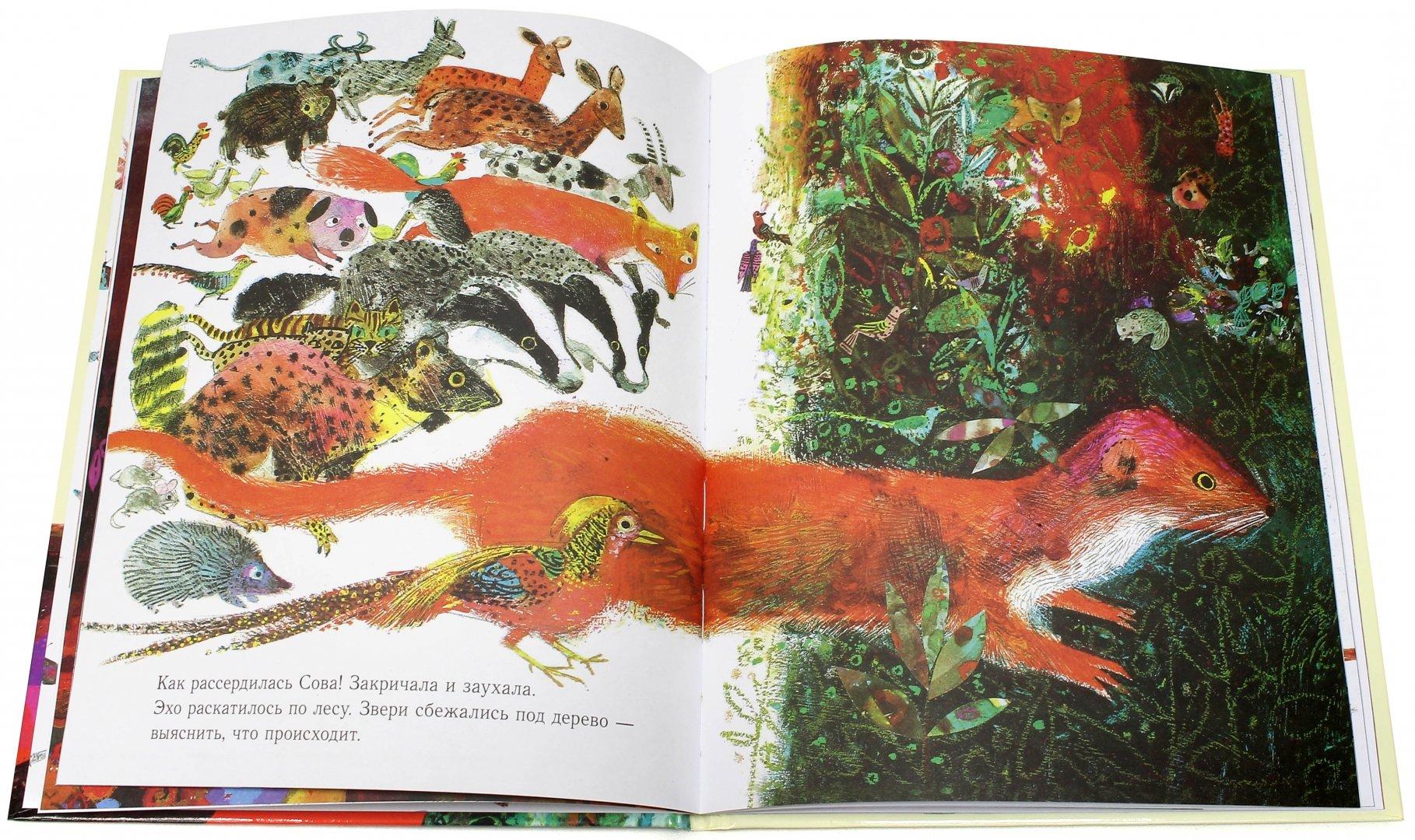 Иллюстрация 1 из 30 для Как Дятел Сову спас - Брайан Уайлдсмит | Лабиринт - книги. Источник: Лабиринт