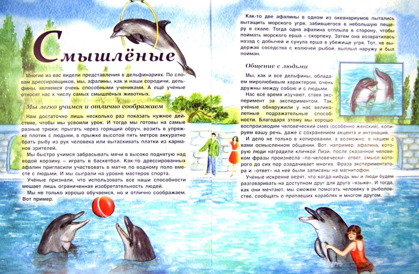 Иллюстрация 1 из 18 для Млекопитающие - Татьяна Жданова | Лабиринт - книги. Источник: Лабиринт